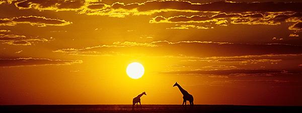vortrag-namibia