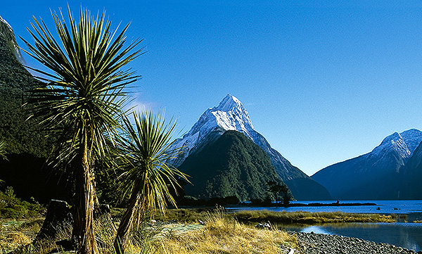 Neuseeland - Dr. Dirk Bleyer