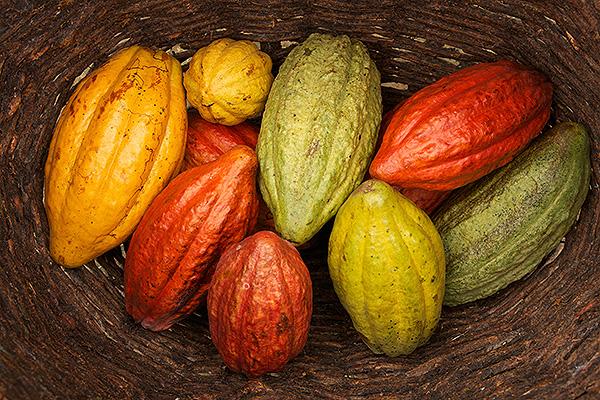Soirée Chocolat - Jürgen Bluhm
